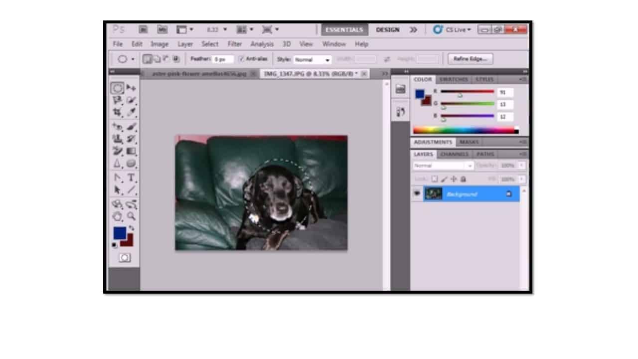 Making Selections In Adobe Photoshop Cs6 Teachucomp Inc