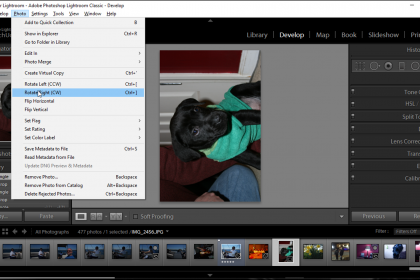 Rotate a Photo in Lightroom Classic CC – Instructions: A picture of a user rotating a photo in Lightroom Classic CC.