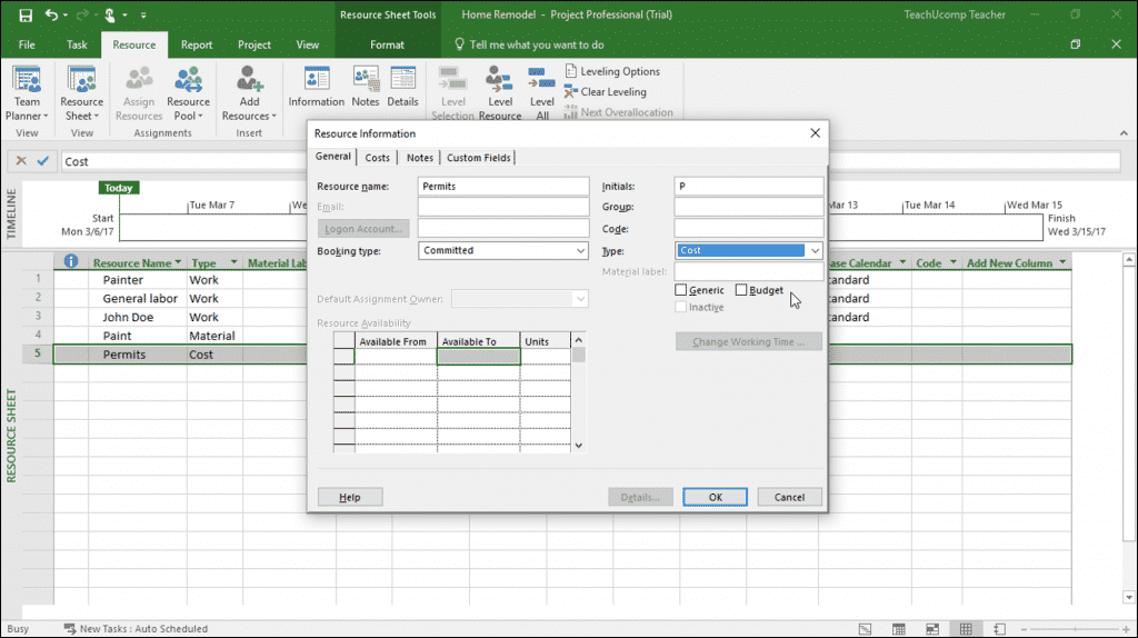 """Create Cost Resources in Project- Instructions: A picture of a cost resource shown within the """"Resource Information"""" dialog box in Microsoft Project."""