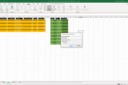 """Workbook Protection in Excel- Instructions: A picture of the """"Protect Structure and Windows"""" dialog box that is used to apply workbook protection in Excel."""