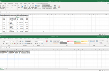 Compare Workbooks in Excel - Instructions: A picture of a user comparing two workbooks in Excel side by side.