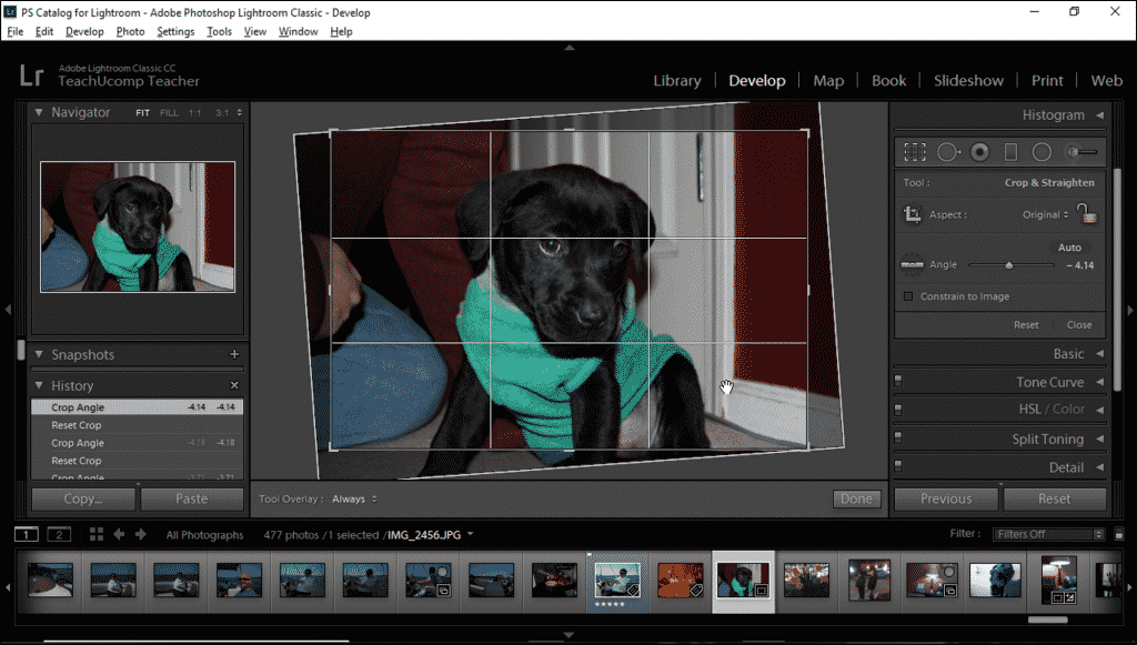 Straighten a Photo in Lightroom Classic CC- Instructions: A picture of a user straightening a photo in Lightroom Classic CC by using the Straighten Tool.