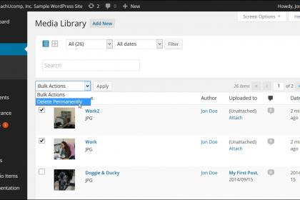 Bulk Delete Media in WordPress- Tutorial: A picture of a user bulk deleting selected media in WordPress.