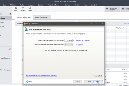 "Set Up Sales Tax in Sage 50- Instructions: A picture of a user creating a sales tax within the ""Set Up Sales Taxes"" window of Sage 50."