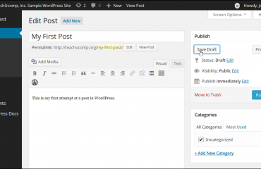Save a Draft in WordPress - Tutorial: A picture of a user saving a draft of a post in WordPress.