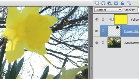 Create a Clipping Group in Photoshop Elements: A picture of a clipping group within the Layers Panel in Photoshop Elements.