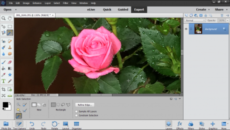 The Auto Selection Tool in Photoshop Elements - Instructions: A picture of a user selecting an object in an image using the Auto Selection Tool in Photoshop Elements.