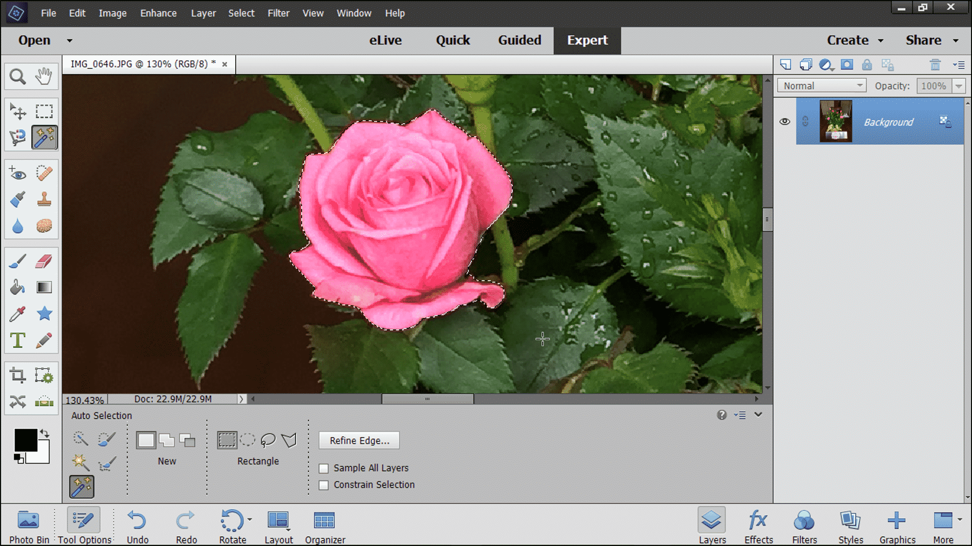 The auto selection tool in photoshop elements instructions the auto selection tool in photoshop elements instructions a picture of a user selecting baditri Images