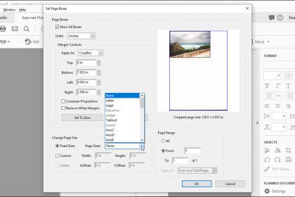 """Crop Pages in Adobe Acrobat - Instructions: A picture of the page cropping options in the """"Set Page Boxes"""" dialog box within Acrobat Pro DC."""