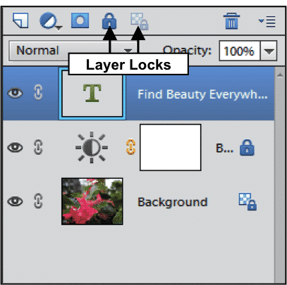 Working with layers | Photoshop Elements 8: Laying the ...