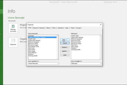 """The Organizer in Microsoft Project – Instructions: A picture of the """"Organizer"""" dialog box in Microsoft Project."""