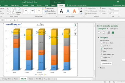 "Format Data Labels in Excel- Instructions: A picture of the ""Format Data Labels"" task pane in Excel."