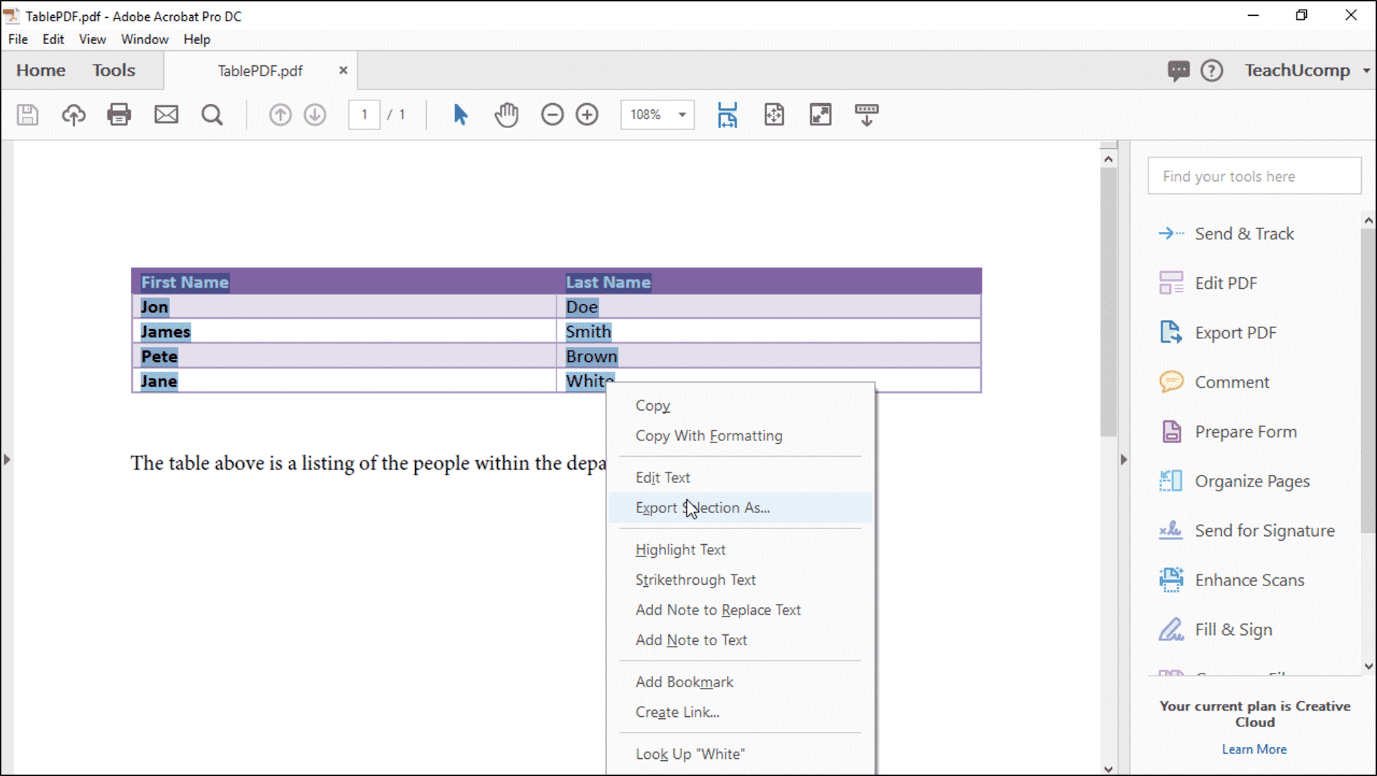 Export a PDF to Excel- Instructions and Video Lesson