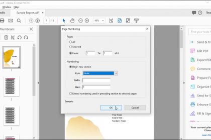 """Change Page Numbers in Acrobat - Instructions: A picture of the """"Page Numbering"""" dialog box in Acrobat Pro DC."""