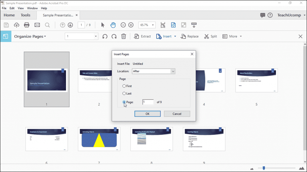 "Add Pages to a PDF using Acrobat Pro DC - Instructions: A picture of a user choosing where to add pages to a PDF by using the ""Insert Pages"" dialog box."