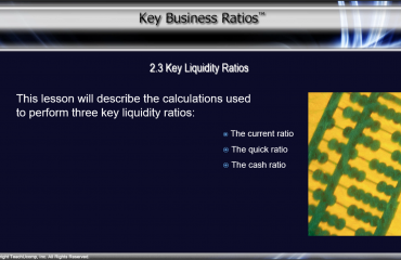 Key Liquidity Ratios - Tutorial: A picture from the video lesson for