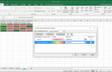Conditional Formatting in Excel - Tutorial: A picture of custom conditional formatting being applied using the