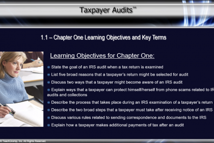 Taxpayer Audits CPE Training Released: A picture from a video lesson within the