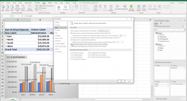 "Enable PowerPivot in Excel - Instructions: A picture of a user enabling the Data Analysis add-ins within the ""Excel Options"" window in Excel for Office 365."
