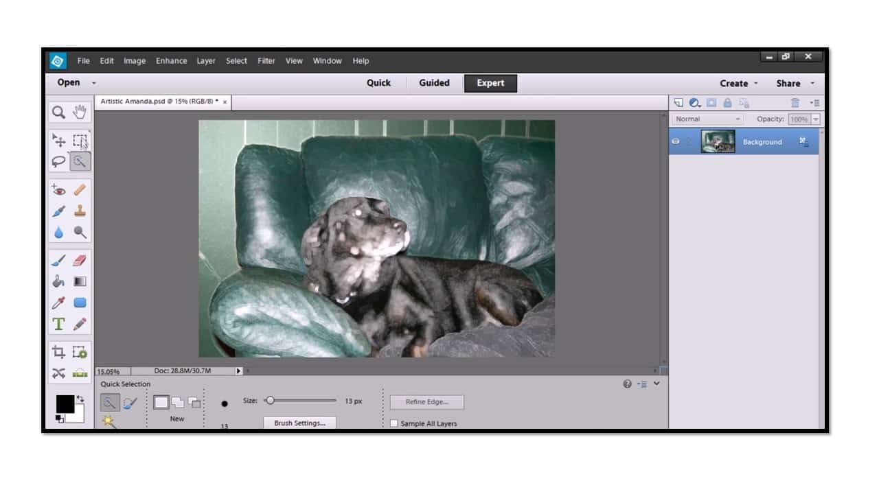 Making selections and using selection tools in photoshop elements 12 selection basics baditri Images