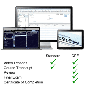 taxpayer audits CPE training tutorial